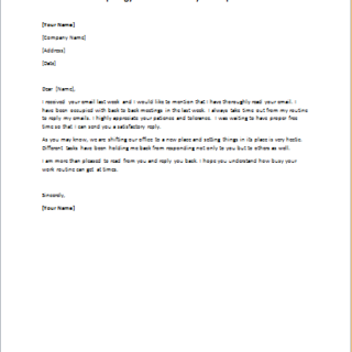 Delayed or No Response Apology Letter writeletter2com