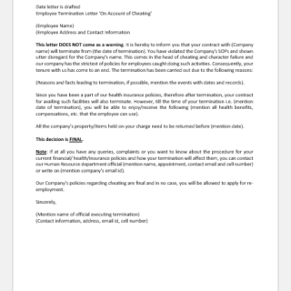 Termination Letter for Cheating the Company