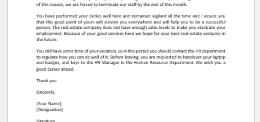 Real Estate Services Termination Letter