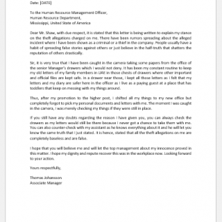 Grievance Letters to Boss for Theft Allegation